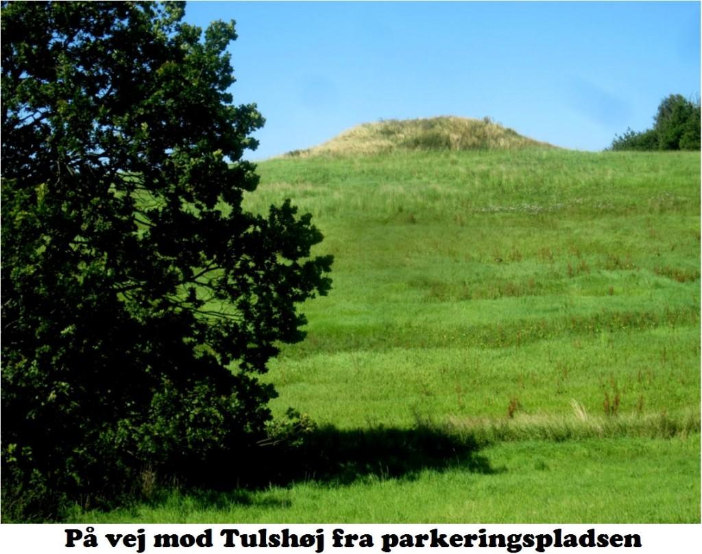 Tulshøj-1a